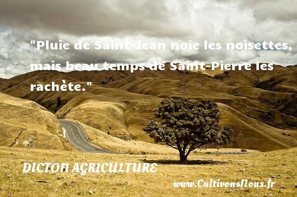 Pluie de Saint-Jean noie les noisettes, mais beau temps de Saint-Pierre les rachète. Un dicton agriculture