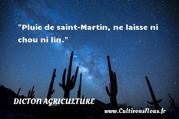 Pluie de saint-Martin, ne laisse ni chou ni lin. Un dicton agriculture
