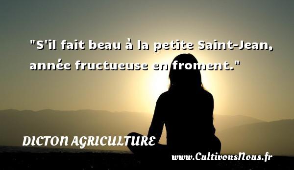 S il fait beau à la petite Saint-Jean, année fructueuse en froment. Un dicton agriculture