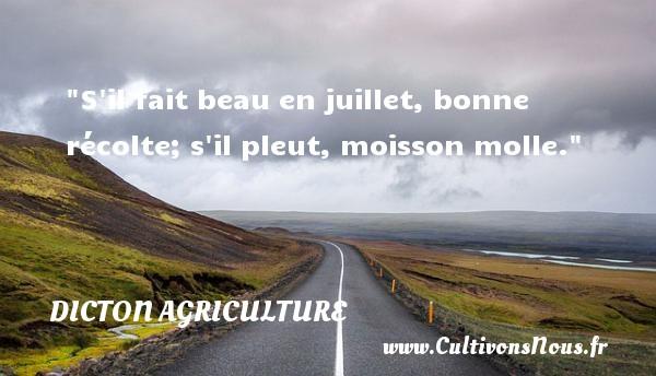 S il fait beau en juillet, bonne récolte; s il pleut, moisson molle. Un dicton agriculture