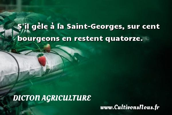 Dicton agriculture - S il gèle à la Saint-Georges, sur cent bourgeons en restent quatorze. Un dicton agriculture DICTON AGRICULTURE