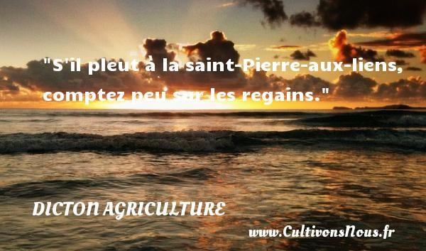 S il pleut à la saint-Pierre-aux-liens, comptez peu sur les regains. Un dicton agriculture