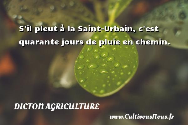 S il pleut à la Saint-Urbain, c est quarante jours de pluie en chemin. Un dicton agriculture