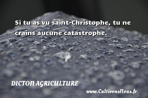 Si tu as vu saint-Christophe, tu ne crains aucune catastrophe. Un dicton agriculture