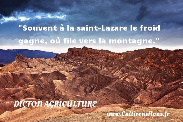Souvent à la saint-Lazare le froid gagne, où file vers la montagne. Un dicton agriculture