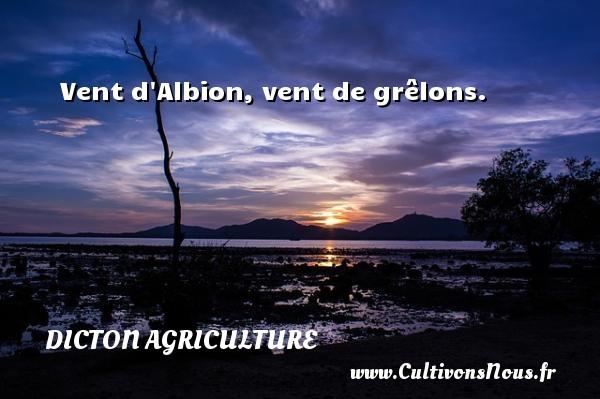 Dicton agriculture - Vent d Albion, vent de grêlons. Un dicton agriculture DICTON AGRICULTURE