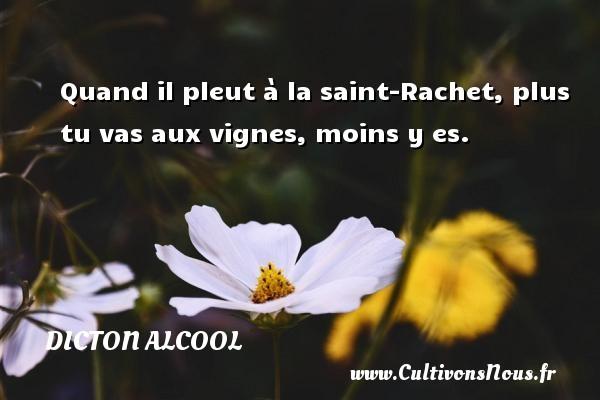 Dicton alcool - Quand il pleut à la saint-Rachet, plus tu vas aux vignes, moins y es. Un dicton alcool DICTON ALCOOL