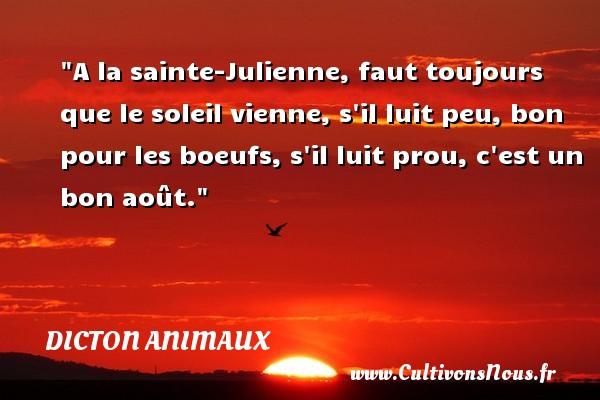 A la sainte-Julienne, faut toujours que le soleil vienne, s il luit peu, bon pour les boeufs, s il luit prou, c est un bon août. Un dicton animaux