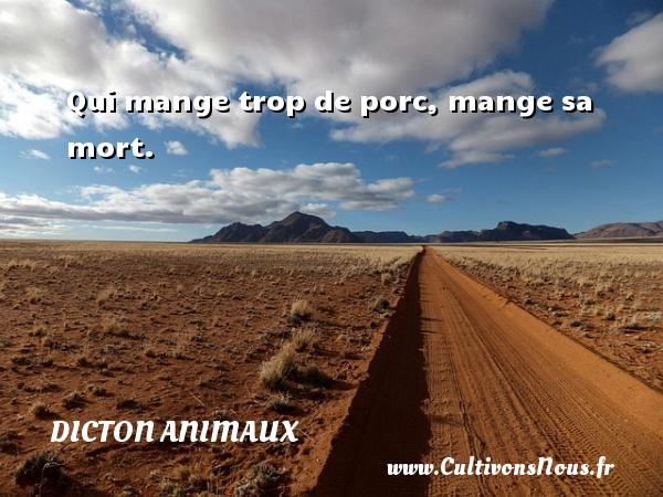 Dicton animaux - Qui mange trop de porc, mange sa mort. Un dicton animaux DICTON ANIMAUX