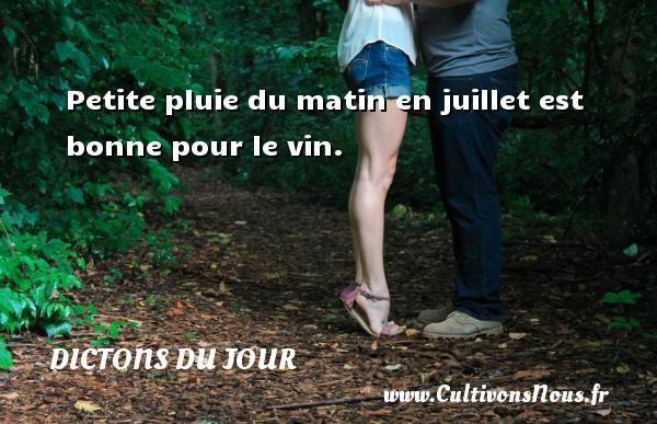 Dictons du jour - Petite pluie du matin en juillet est bonne pour le vin.   Un dicton français DICTONS DU JOUR