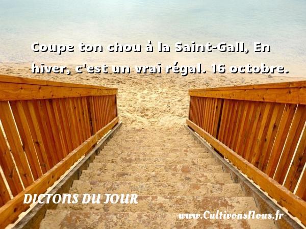 Coupe ton chou à la Saint-Gall, En hiver, c est un vrai régal.  16 octobre. Un dicton français DICTONS DU JOUR