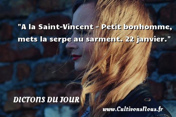 A la Saint-Vincent - Petit bonhomme, mets la serpe au sarment. 22 janvier. Un dicton français DICTONS DU JOUR
