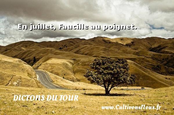 Dictons du jour - En juillet, Faucille au poignet. Un dicton français DICTONS DU JOUR