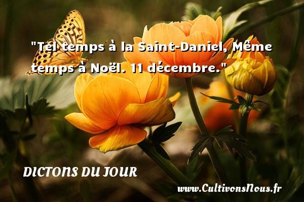 Tel temps à la Saint-Daniel, Même temps à Noël. 11 décembre. Un dicton français DICTONS DU JOUR