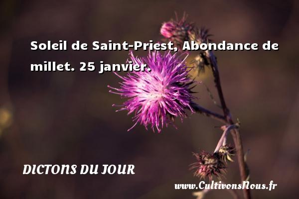 Soleil de Saint-Priest, Abondance de millet.  25 janvier. Un dicton français DICTONS DU JOUR