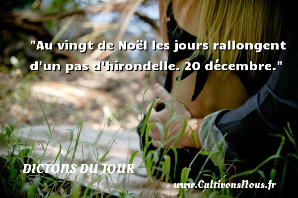 Dictons du jour - Au vingt de Noël les jours rallongent d un pas d hirondelle. 20 décembre. Un dicton français DICTONS DU JOUR