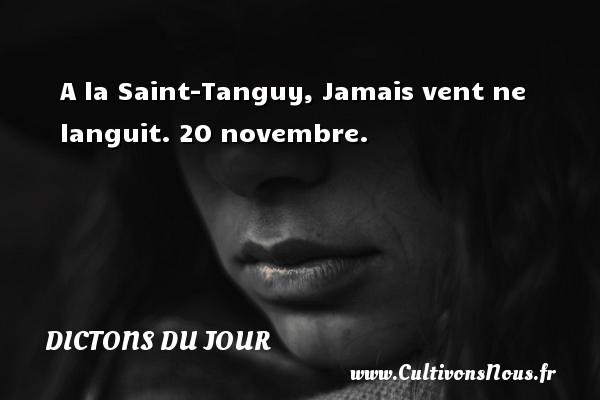 A la Saint-Tanguy, Jamais vent ne languit.  20 novembre. Un dicton français DICTONS DU JOUR