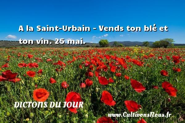 A la Saint-Urbain - Vends ton blé et ton vin.  25 mai. Un dicton français DICTONS DU JOUR