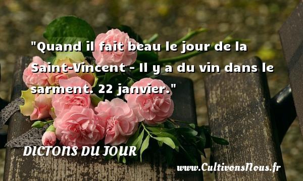 Quand il fait beau le jour de la Saint-Vincent - Il y a du vin dans le sarment. 22 janvier. Un dicton français DICTONS DU JOUR