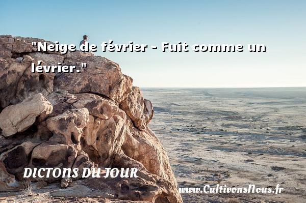Neige de février - Fuit comme un lévrier. Un dicton français DICTONS DU JOUR