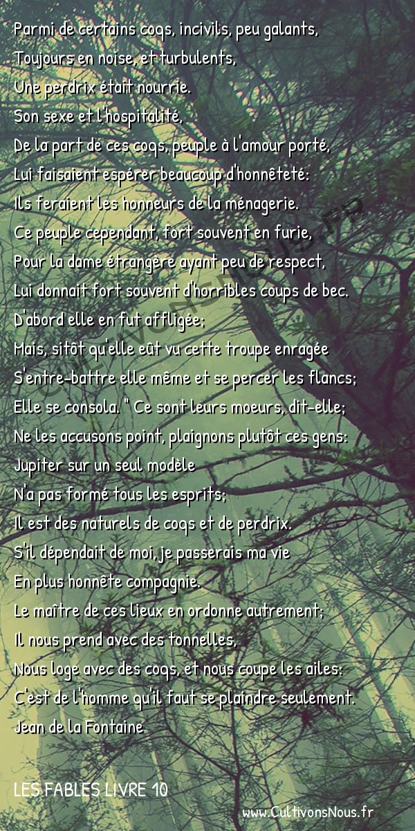 Fables Jean de la Fontaine - Les fables Livre 10 - La Perdrix et les Coqs -   Parmi de certains coqs, incivils, peu galants, Toujours en noise, et turbulents,