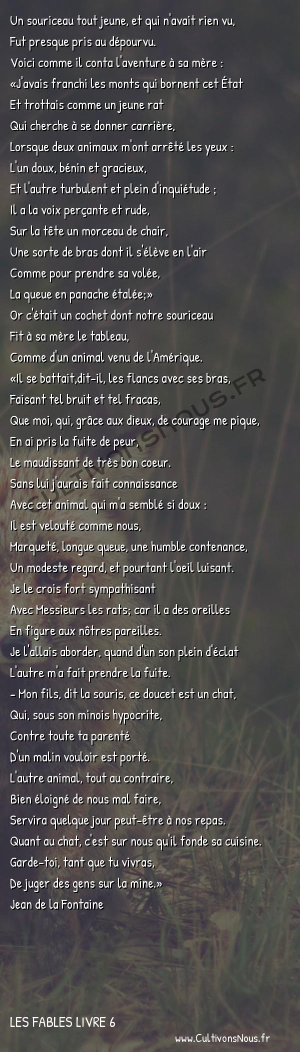 Fables Jean de la Fontaine - Les fables Livre 6 - Le Cochet le Chat et le Souriceau -   Un souriceau tout jeune, et qui n'avait rien vu, Fut presque pris au dépourvu.