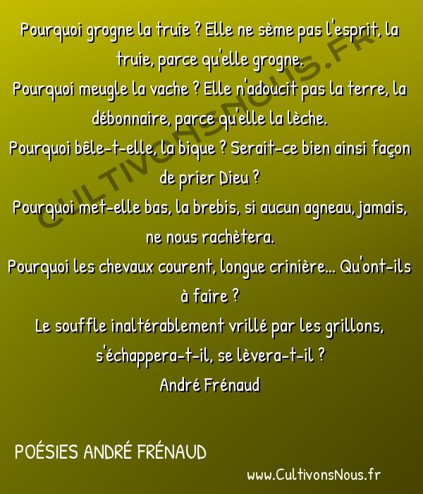 Poésies André Frénaud - Extraits - inutile nature -  Pourquoi grogne la truie ? Elle ne sème pas l'esprit, la truie, parce qu'elle grogne. Pourquoi meugle la vache ? Elle n'adoucit pas la terre, la débonnaire, parce qu'elle la lèche.