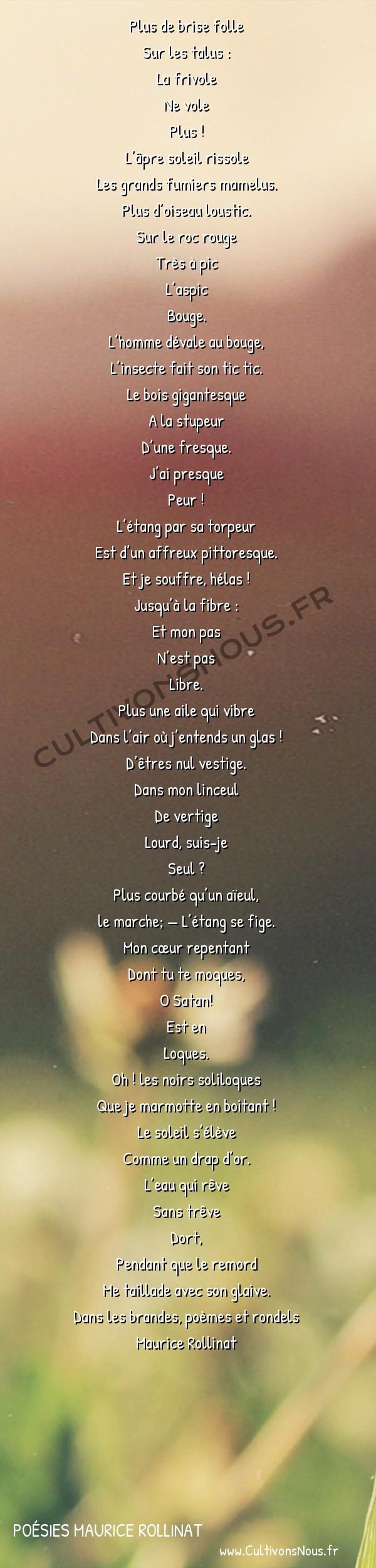 Poésies Maurice Rollinat - Dans les brandes poèmes et rondels - Le remords -  Plus de brise folle Sur les talus :