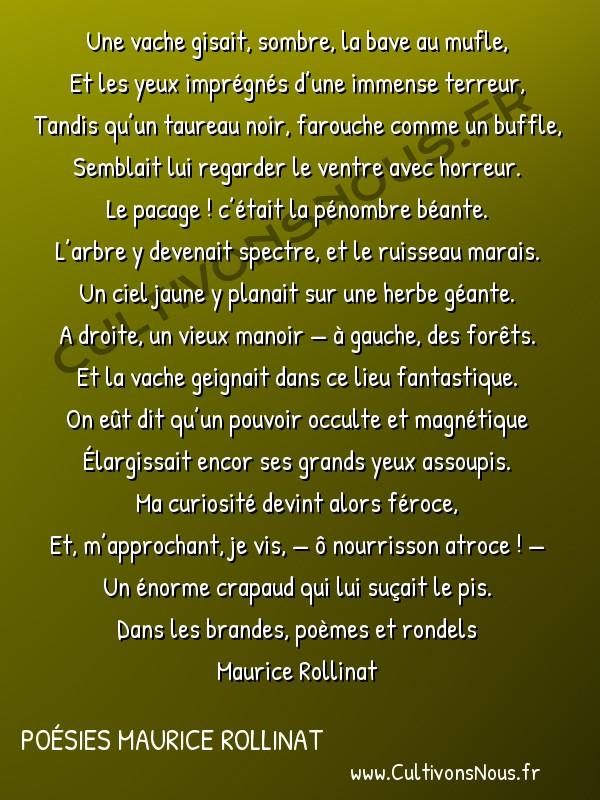 Poésies Maurice Rollinat - Dans les brandes poèmes et rondels - La vache -  Une vache gisait, sombre, la bave au mufle, Et les yeux imprégnés d'une immense terreur,