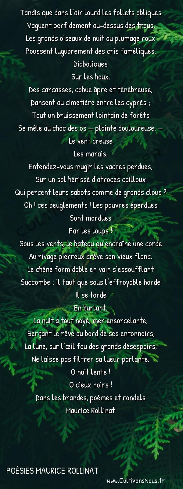 Poésies Maurice Rollinat - Dans les brandes poèmes et rondels - Nuit fantastique -  Tandis que dans l'air lourd les follets obliques Vaguent perfidement au-dessus des trous,