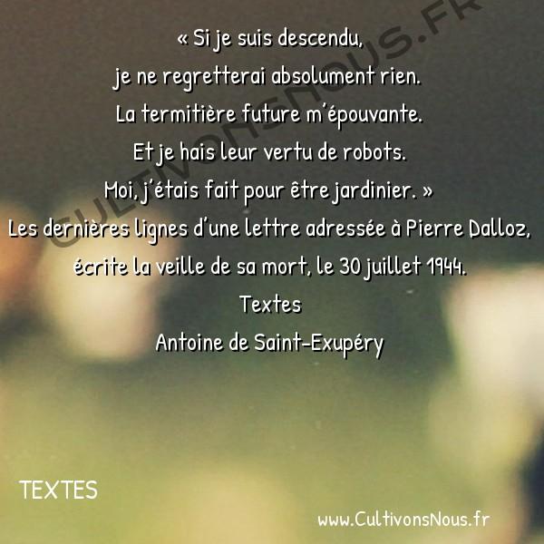 Poesie Antoine de Saint-Exupéry - Textes - Si je suis descendu -  « Si je suis descendu, je ne regretterai absolument rien.