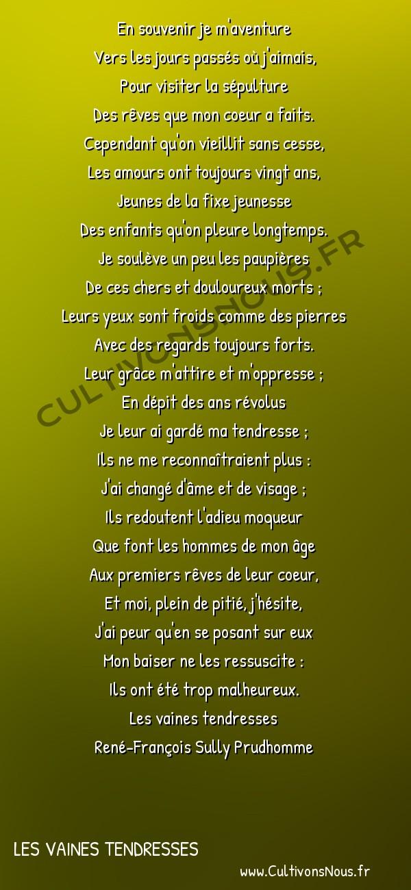 Poésie René-François Sully Prudhomme - Les vaines tendresses - Pèlerinages -  En souvenir je m'aventure Vers les jours passés où j'aimais,