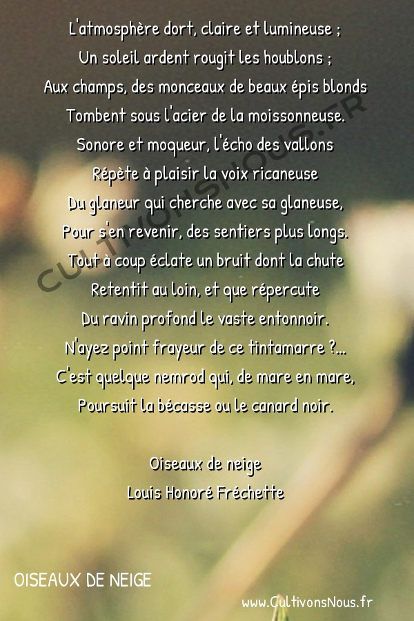 Poésie Louis Honoré Fréchette - Oiseaux de neige - Septembre -  L'atmosphère dort, claire et lumineuse ; Un soleil ardent rougit les houblons ;