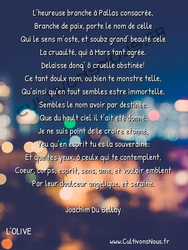 Poésie Joachim Du Bellay - L'Olive - Sonnet 4 -  L'heureuse branche à Pallas consacrée, Branche de paix, porte le nom de celle