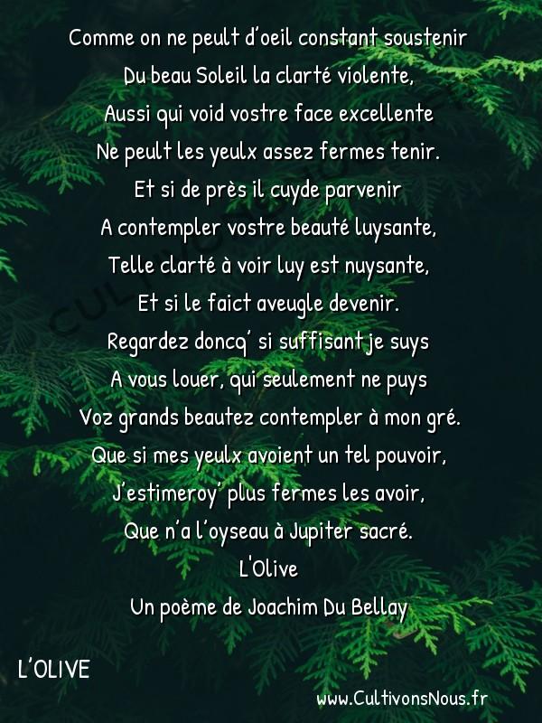 Poésie Joachim Du Bellay - L'Olive - Sonnet 6 -  Comme on ne peult d'oeil constant soustenir Du beau Soleil la clarté violente,