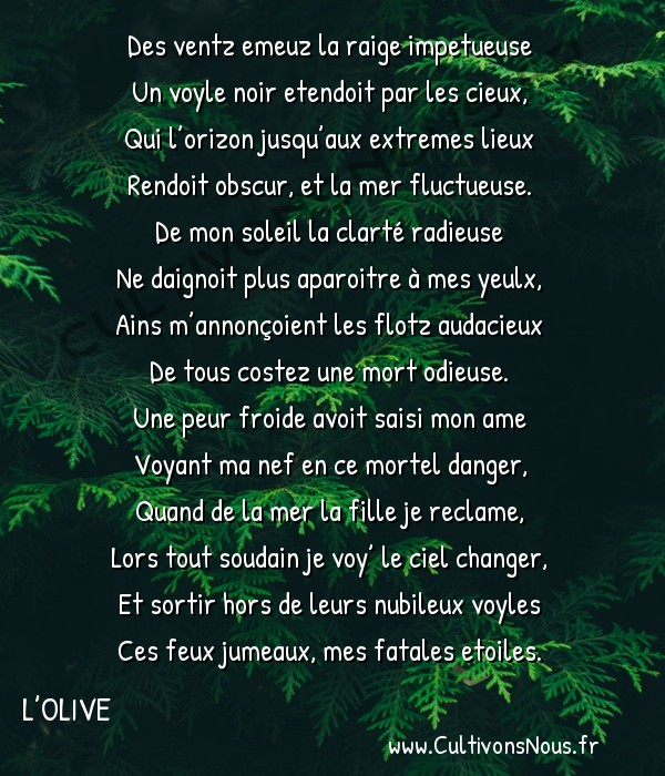 Poésie Joachim Du Bellay - L'Olive - Sonnet 11 -  Des ventz emeuz la raige impetueuse Un voyle noir etendoit par les cieux,