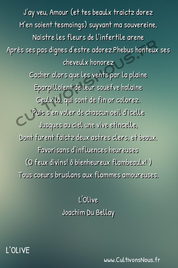 Poésie Joachim Du Bellay - L'Olive - Sonnet 17 -  J'ay veu, Amour (et tes beaulx traictz dorez M'en soient tesmoings) suyvant ma souvereine,