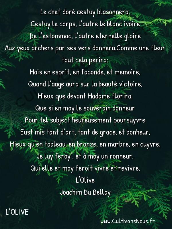 Poésie Joachim Du Bellay - L'Olive - Sonnet 18 -  Le chef doré cestuy blasonnera, Cestuy le corps, l'autre le blanc ivoire