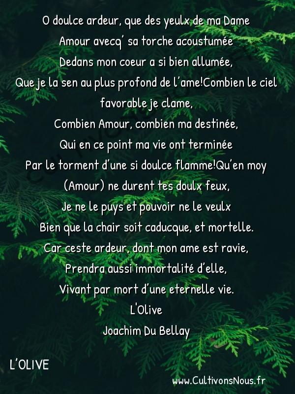 Poésie Joachim Du Bellay - L'Olive - Sonnet 22 -  O doulce ardeur, que des yeulx de ma Dame Amour avecq' sa torche acoustumée