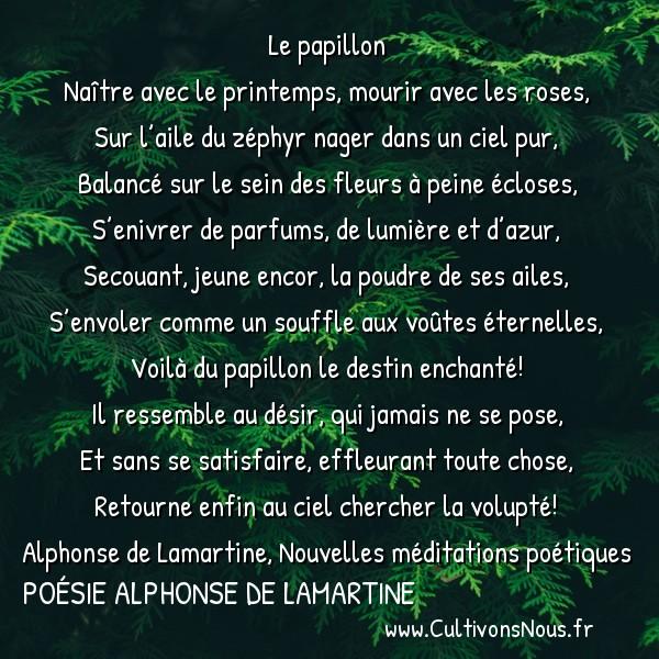 Poésie Alphonse de Lamartine - Nouvelles méditations poétiques - Papillon -  Le papillon Naître avec le printemps, mourir avec les roses,