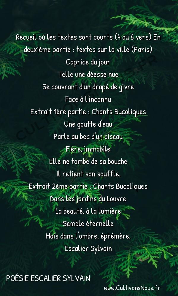 Poésies contemporaines - poésie escalier sylvain - Chants Bucoliques -