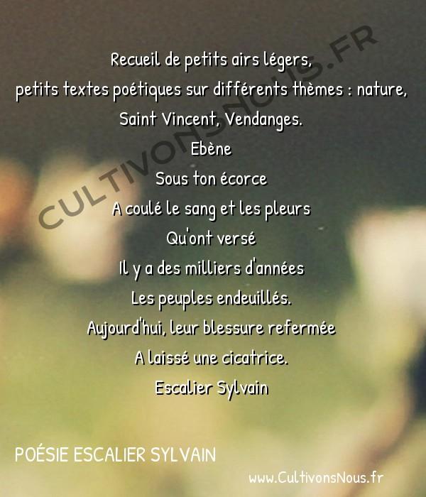 Poésies contemporaines - poésie escalier sylvain - Ariettes -