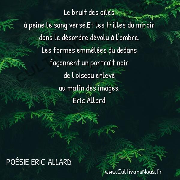Poésies contemporaines - Poésie Eric Allard - l' échappée belle -  Le bruit des ailes à peine le sang versé.Et les trilles du miroir