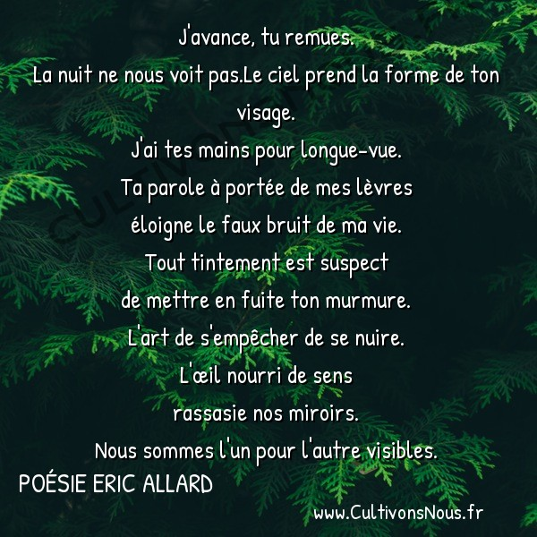 Poésies contemporaines - Poésie Eric Allard - le beau bleu ébloui de la nuit -  J'avance, tu remues. La nuit ne nous voit pas.Le ciel prend la forme de ton visage.