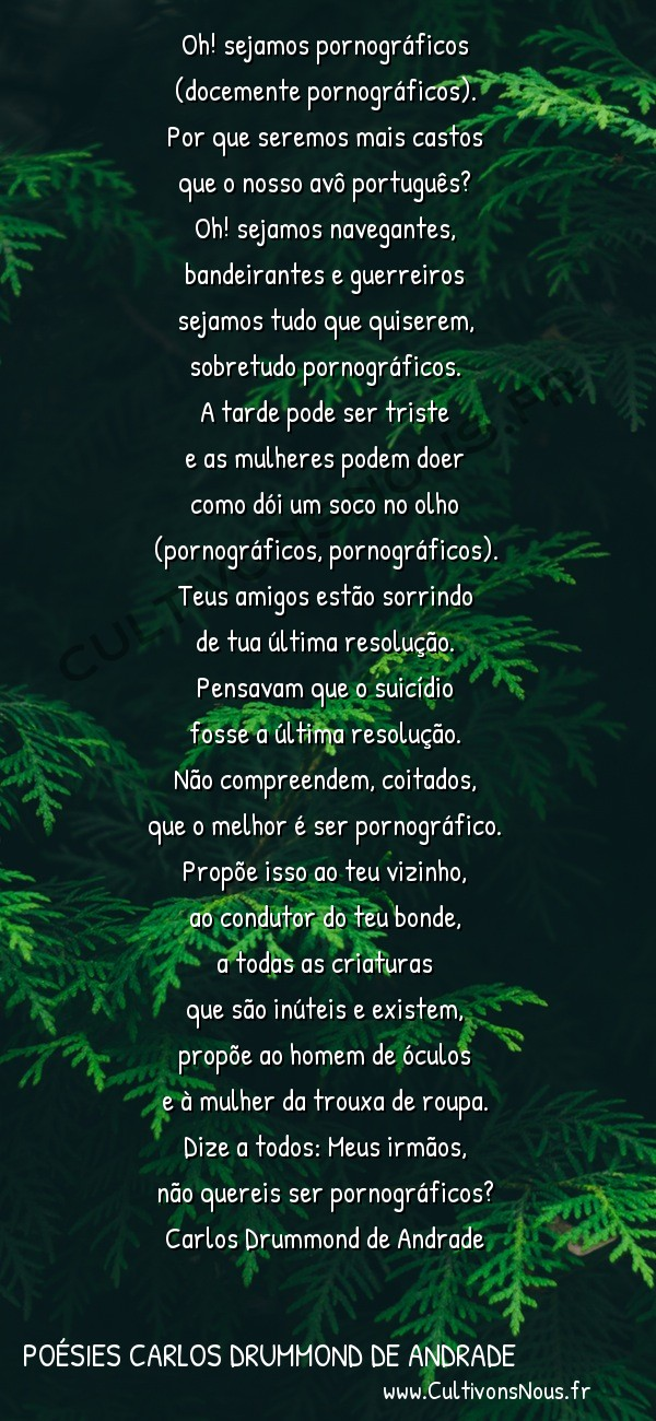 Poésies Brésiliennes - Auteurs Brésiliens - Poète Carlos Drummond de Andrade - Poésies Carlos Drummond de Andrade - Em face dos últimos acontecimentos -  Oh! sejamos pornográficos (docemente pornográficos).