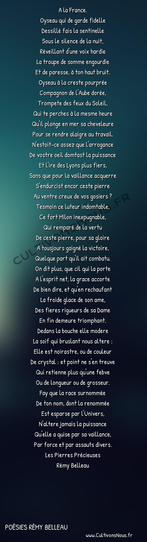 Poésies Rémy Belleau - Les Pierres Précieuses - La pierre du coq -  A la France. Oyseau qui de garde fidelle