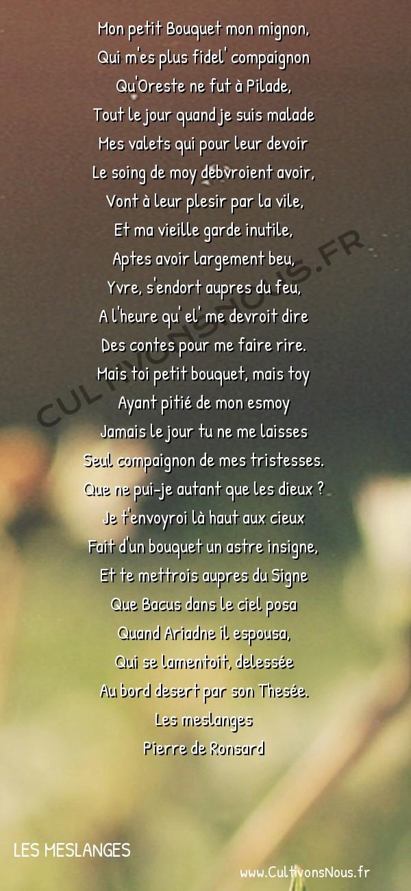 Poésie Pierre de Ronsard - Les meslanges - Odelette a son bouquet -  Mon petit Bouquet mon mignon, Qui m'es plus fidel' compaignon
