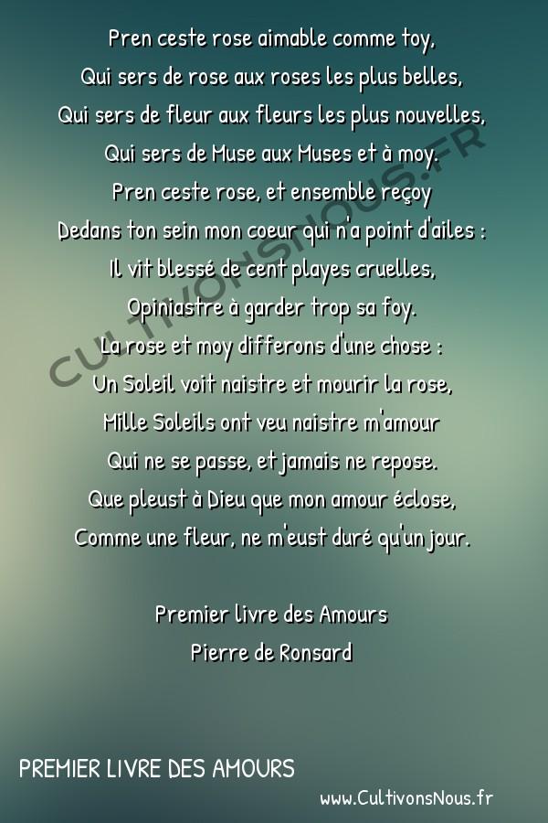 Poésie Pierre de Ronsard - Premier livre des Amours - Pren ceste rose aimable comme toy -  Pren ceste rose aimable comme toy, Qui sers de rose aux roses les plus belles,