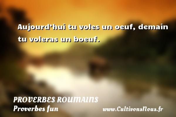 Aujourd'hui tu voles un oeuf, demain tu voleras un boeuf. Un Proverbe roumain PROVERBES ROUMAINS - Proverbes fun - Proverbes philosophiques