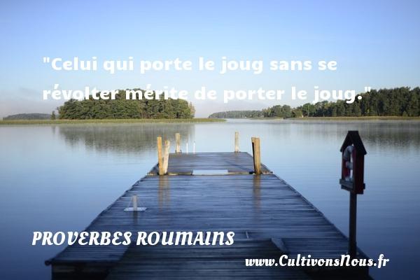 Celui qui porte le joug sans se révolter mérite de porter le joug. Un Proverbe roumain PROVERBES ROUMAINS - Proverbes philosophiques